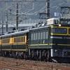 第664列車 「 サロンカーなにわ!琵琶湖一周の旅 を狙う 」
