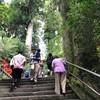 箱根神社・元箱根で遊ぶ