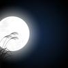 【中国語会話 in 福井~その15~】 日本では「中秋の名月」と言います