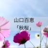山口百恵「秋桜」