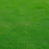 【電動vs手動】おすすめ芝刈り機はナイスバーディーモアGSB-2000N
