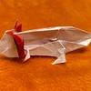 【家遊び】爬虫類・両生類の折り紙