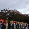 金沢マラソン2017(2017/10/29) 終始笑顔で楽しく走れます!是非是非多くの方に走っていただきたい極上の大会です!