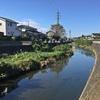 境川を歩く その2 横浜瀬谷区-大和市間鹿島橋から町田市-相模原中央区間坂本橋まで