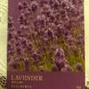 今週のカラー・カード(ラベンダー)