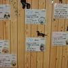 保護犬パーク長居店 2018.12.24