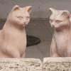 7月2日 豊島区南長崎から板橋区大谷口まで猫さま歩き とその情景