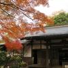 北鎌倉寺社の紅葉・天園ハイキング(初冬)