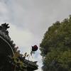 冬薔薇たぶんわたしは魔女になる ~卒業論文④~