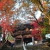令和元年 紅葉の京都(2)高雄 和気清麻呂が創建 神護寺 美しい北山杉の景色も