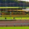 【中山記念 2021 予想】追い切り・ラップ適性・レース傾向考察 & 各馬評価まとめ / スピード性能を問いたい一戦