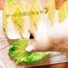 🌟秋冬🍁の養生野菜の王様👑白菜💗✨