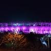田村ゆかり BIRTHDAY ♡ LIVE 2018 *Tricolore♡Plaisir*@武蔵野の森 総合スポーツプラザ メインアリーナ(02.27)