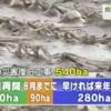 【台風10号・北海道被害】農地の台風被害、春から使えるのは540haのうち170haだけ!半分以上は無理!!