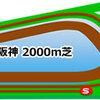 2017  鳴尾記念(G3)出走予定人気馬・コース分析
