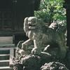 ご近所のこま犬くんたち・ローライ35・rollei35 TE w/fuji natura 1600