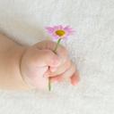 秘密の妊活日記~私と赤ちゃんが出会うまで~