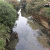 山口県下松市の平田川を探索してみた記録