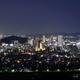 円山花木園から望む静岡市街の夜景