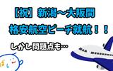 【新潟~大阪間】格安航空ピーチの新規就航に際し、大阪への格安1泊2日旅行を計画する。が、正直厳しそう。