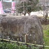 稲取の築城石とつるし雛  東伊豆町稲取