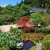 庭園57 実光院庭園「契心園」と「旧理覚院庭園」