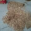 薪ストーブ始生代86 木屑を燃やす~チェーンソー屑(おがくず)を燃料に再利用