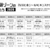 『ザ・ルーム』梅田上映は明日から&空想TVスポット公開!