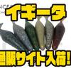 【Transcendence】バス釣りの常識を一新する本気食いソフトベイト「イギータ」発売!