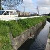 みどり川クリーン作戦のためのEM浄化2回目、500L投入。