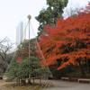 2020/12/11 小石川後楽園