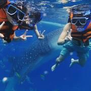 【フィリピン・セブ島に語学留学が無料でいける⁉】ブロガー・youtuberにおすすめの案件