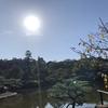 秋になったから琵琶湖らへんをウロウロした話 その3  みんな大好きひこにゃんを見て来たぞ