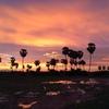 カンボジア滞在記
