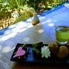 銘茶「つゆひかり」をいただける御前崎市「まるよ茶屋」で地産地消のランチ