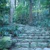 第44歩:聖地熊野