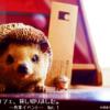 【富山の書斎カフェ】coconieを貸し切り、ワークイベントを開催!写真やデザイン/WEB製作について意見を交換。