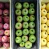りんご3色。