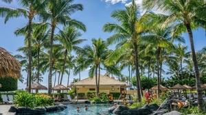 ついに来ました♪憧れのハワイ!観光にまつわる英語フレーズ