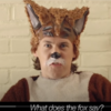 The Fox(What Does the Fox Say?) Ylvis(イルヴィス)