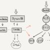 DynamoDB + Lambda + SSM でテストサーバーをポコポコつくる仕組み