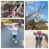 3月①森のゴミ拾いと大冒険