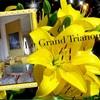 ヴェルサイユ宮殿  グラントリアノン♪ ハネムーン旅行記2014 フランス&イタリア