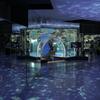 のとじま水族館の新しくなった回遊水槽「のと海遊回廊」を見に行った
