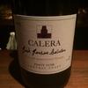 食歩記 新橋 東京ワイン蔵 カルフォルニアワイン専門ワインバーでカレラもグラスでいただけました!