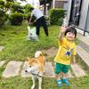 犬は水洗いだけだと臭くならない!ペットシャンプー業界激震の真実