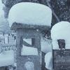 2017 京都大雪 京都市内も真っ白