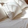 ベッドの上がほこりっぽい時の裏ワザ的対策は?放っておくと肺炎に!?