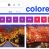 〈検索 Advent Calendar 14日目〉 Google画像検索のcolored filter buttonsをいろいろみる