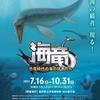海竜~恐竜時代の海の猛者たち~